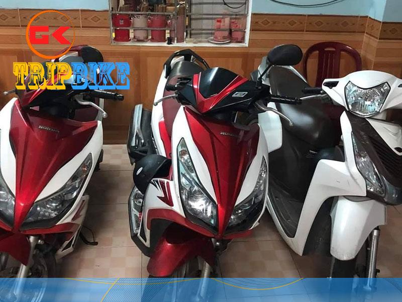 Thụy Điển House – Cho thuê xe máy ở Quảng Trị
