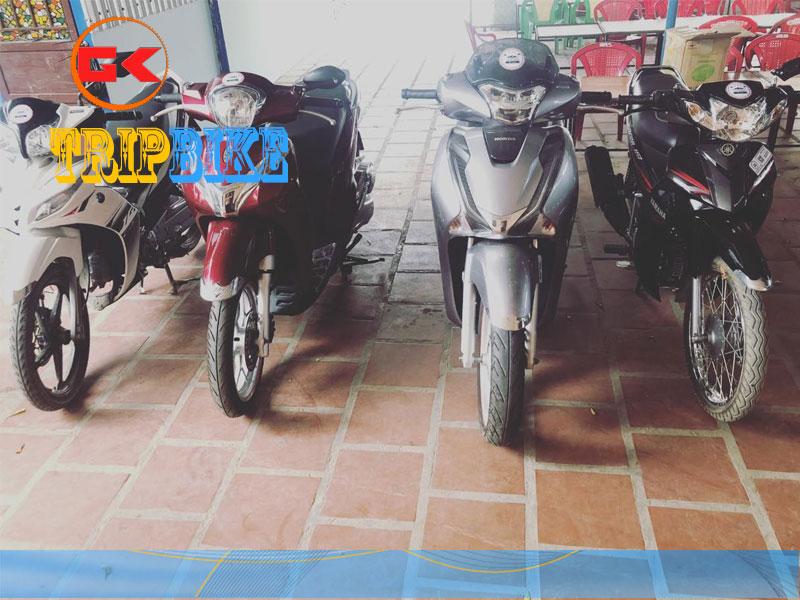 Thuê xe máy azi ninh thuận