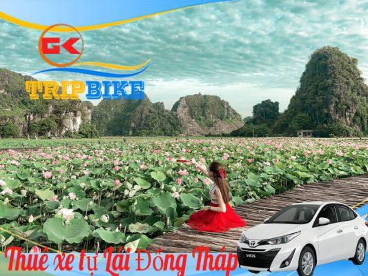Thuê xe tự lái ở Cao Lãnh Đồng Tháp